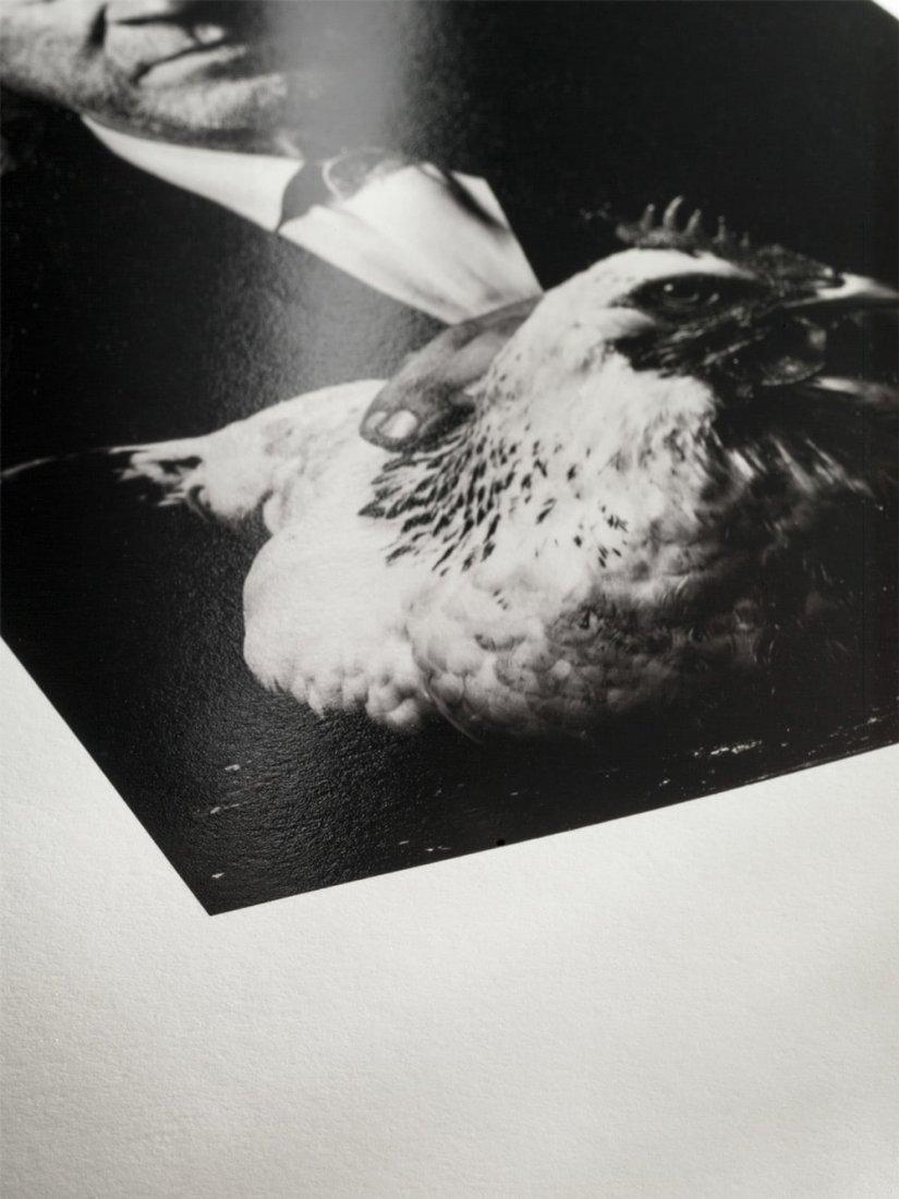 Bild 1 von Hahnemühle Fine Art Papier - Photo Rag® Baryta 315 g/m²