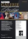 Ilford GALERIE - Prestige Gold Mono Silk 270 g/m²