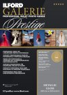 Ilford GALERIE - Prestige Metallic Gloss 260 g/m²