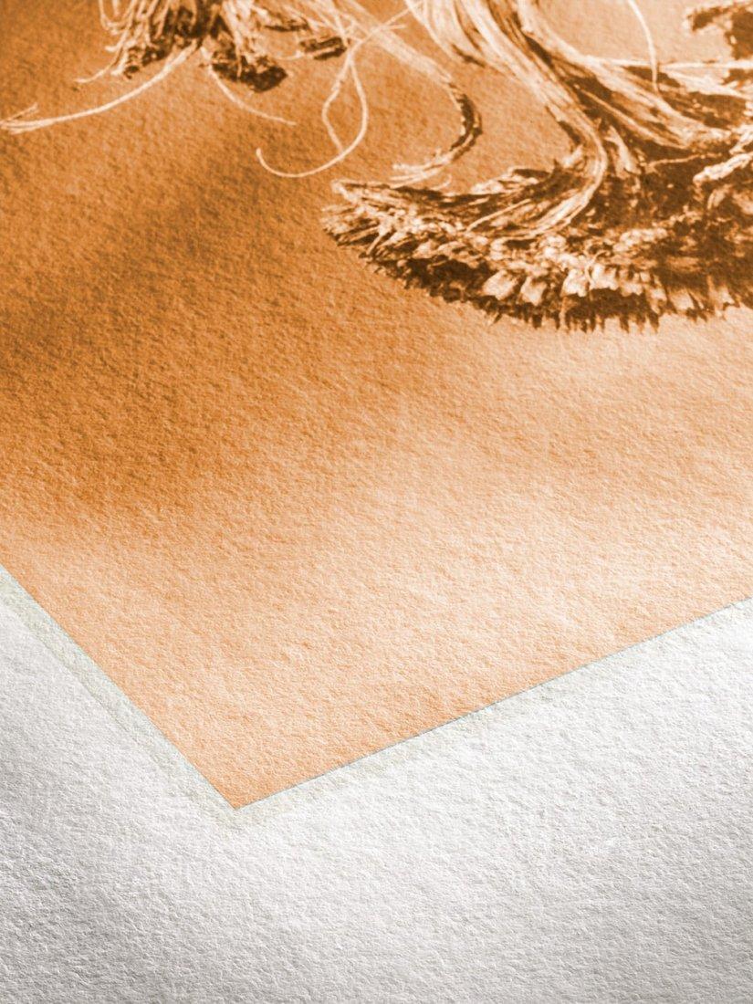 Bild 1 von Hahnemühle Fine Art Papier -  Museum Etching 350 g/m² Deckle Edge