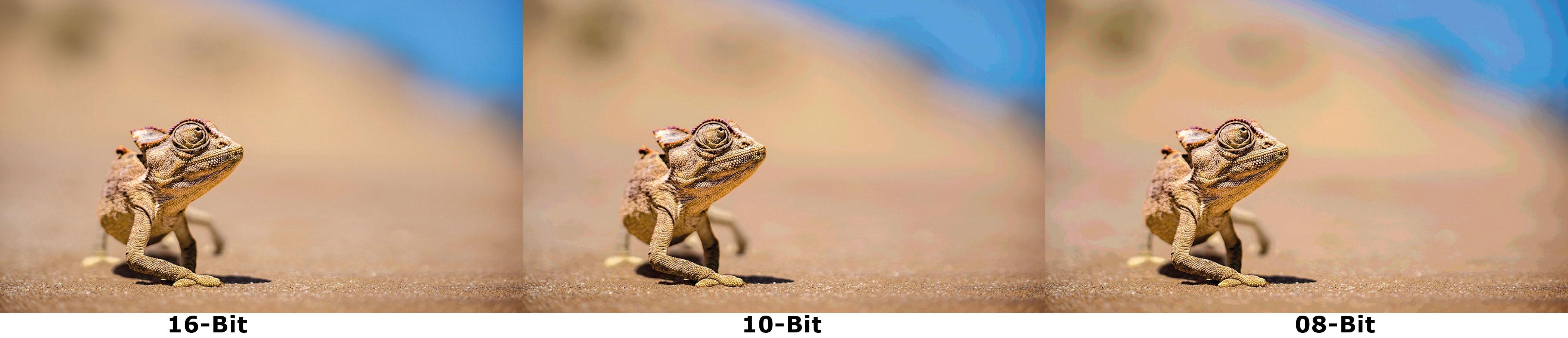 Sanfte Übergänge und Verläufe dank 16-Bit-LUT und 10-Bit-Modus